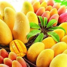 Hangsen Sabor Mango